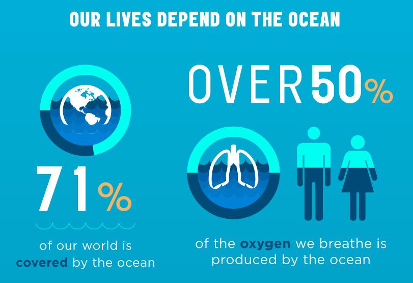 Love The Ocean 2016